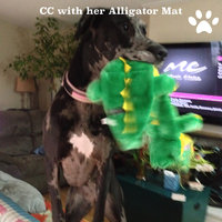 Top Paw Alligator Dog Toy Squeaker Mat uploaded by Rebecca P.