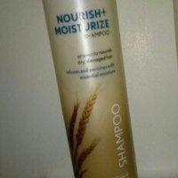 Aveeno Active Naturals Nourish + Moisturize Shampoo uploaded by Kayla R.