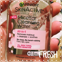 Garnier Skinactive Micellar Cleansing Water All-in-1 Makeup Remover & Cleanser 3 oz uploaded by Katja E.