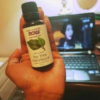 NOW Foods Tea Tree Oil uploaded by Alee H.