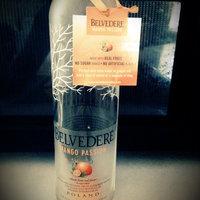 Belvedere Vodka  uploaded by ERICA W.