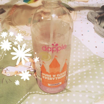 Photo of dapple Naturally Clean Everything Spray, Lavender, 30 fl oz uploaded by Kirsten R.
