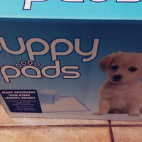 Go Pet Club 100 Puppy Training Pads, 23 by 24-Inch uploaded by Jannetta H.