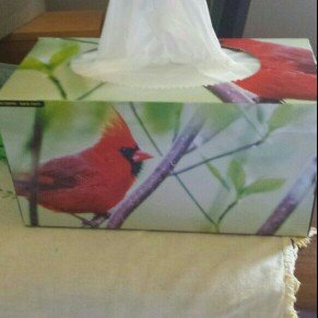Photo of Kleenex® Medium Count Upright Everyday Tissues 4-80 ct Pack uploaded by Lori B.