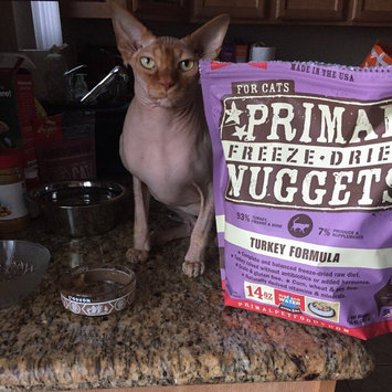 Photo of Primal Cat Freeze Dried Nuggets Chicken & Salmon - 14 oz uploaded by Liz H.