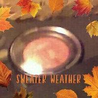 Laura Geller Baked Balance-n-Brighten uploaded by Natosha W.