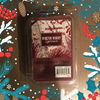 SONOMA Goods for Life™ Winter Berry Spruce Melt 6-piece Set, Multicolor uploaded by Taylor A.