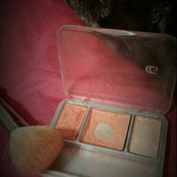 COVERGIRL Instant Cheekbones Contouring Blush uploaded by Sandra C.