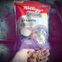 Kellogg's Origins™ Ancient Grains Granola Raisin Apple Cereal 12.5 oz. Bag uploaded by Crystal W.
