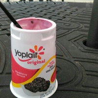 Yoplait® Original Blackberry Harvest Yogurt uploaded by Kindra M.
