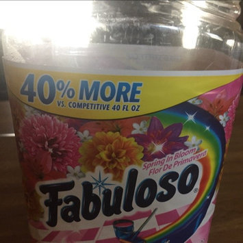 Photo of Fabuloso Multi-Purpose Cleaner uploaded by TerryLynn M.