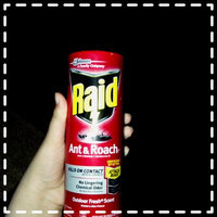 Raid Ant & Roach Killer Aerosol uploaded by Alana C.