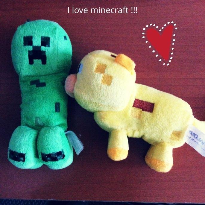 Minecraft uploaded by Samia Z.