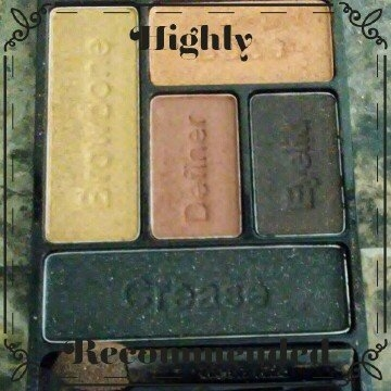 Wet n Wild Color Icon Eyeshadow Palette uploaded by Jessica M.