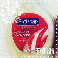 Softsoap® Foaming Soap, Holiday uploaded by Tamara T.