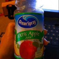 Ocean Spray® 100% Apple Juice 15.2 fl. oz. Plastic Bottle uploaded by Jennifer B.