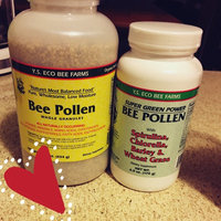 YS Royal Jelly/Honey Bee Bee Pollen Whole Granules - 16 Ounces Granules - Bee Products uploaded by Candy Y.