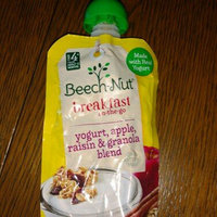 Beech-Nut® Homestyle Yogurt Blends Cinnamon Raisin & Granola with Yogurt uploaded by Ms D.