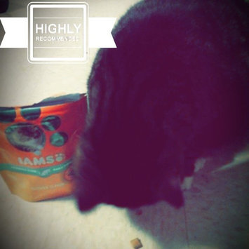 Photo of Iams™ Proactive Health™ Hairball Chicken Flavor Daily Treats Cat Food uploaded by Amy S.