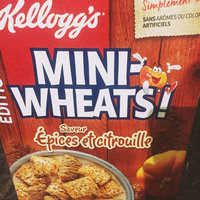 Kellogg's® Frosted Mini-Wheats® Limited Edition Pumpkin Spice Cereal 15.5 oz. Box uploaded by Jennifer M.