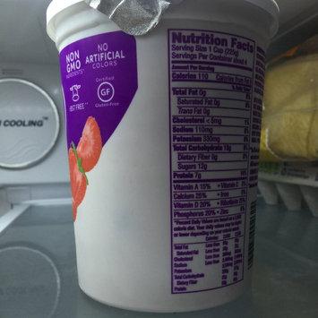 Photo of Dannon Light & Fit 60 Calorie Packs Strawberry/Blueberry/Raspberry Nonfat Yogurt - 12 PK uploaded by Mariah D.
