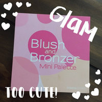 Coastal Scents Blush and Bronzer Palette uploaded by Brittany S.