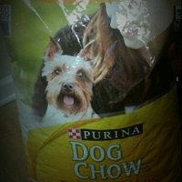 Purina Dog Chow Dog Chow Little Bites Dog Food - 16.5 lb uploaded by Toni F.