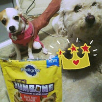 Pedigree® Mini Jumbone® Real Beef Flavor uploaded by Maria M.