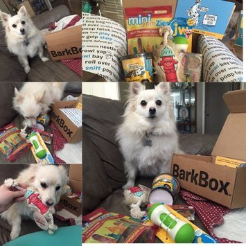 Bark Box image uploaded by Crystal S.