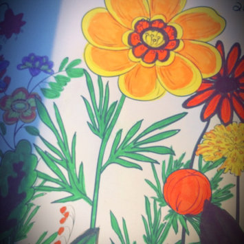 The Calm Coloring Book uploaded by Emily L.