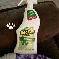 Original Scent OdoBan Odor Eliminator - RTU Spray W/1 Gallon Concentrate uploaded by Brenna E.