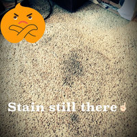 Resolve Easy Clean - Carpet Cleaning System uploaded by Paige F.