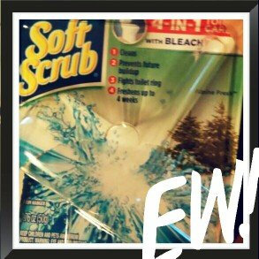Photo of Soft Scrub 4-in-1 Toilet Care Alpine Fresh Scent Toilet Cleaner with Bleach uploaded by Christina C.