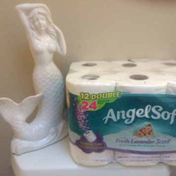 Photo of Angel Soft Classic White Bath Tissue uploaded by Cary W.