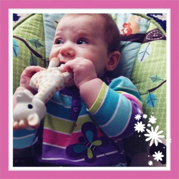 Vulli Sophie the Giraffe Teether uploaded by Amy K.