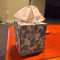 Kimberly-Clark Kleenex Facial Tissue uploaded by Megan P.