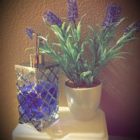 method french lavender foaming hand wash uploaded by Teresa N.