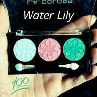 L.A. Colors 3 Color Eyeshadow Palette uploaded by Staci M.