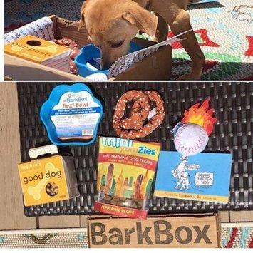Bark Box uploaded by Chelsie H.