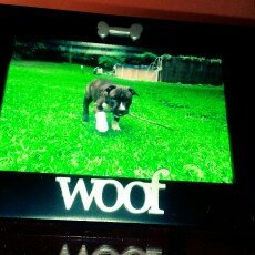 Photo of Malden Black Wood Expression Picture Frame, Woof, 4
