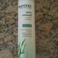 Aveeno Pure Renewal Shampoo uploaded by Kim B.