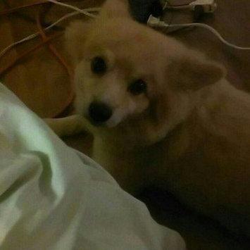 Sentry SENTRYA Flea Dog Comb uploaded by Karen M.