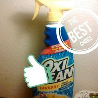 OxiClean™ Laundry Stain Remover Spray uploaded by Kelley d.