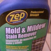 Enforcer Products Enforcer 32 Oz NoScrub Mold Mildew Stain Remover ZUMILDEW32 uploaded by Brittnie A.
