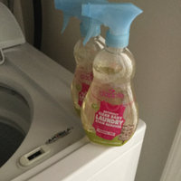 dapple Stain Remover Spray Fragrance-Free uploaded by Renee T.