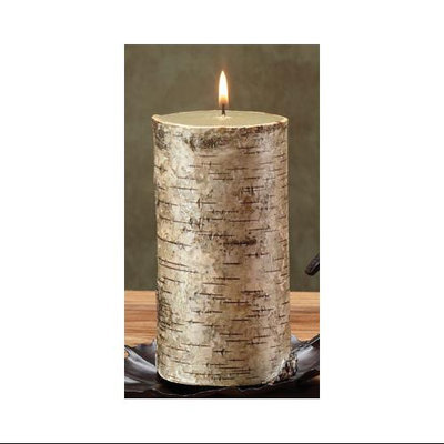 Cc Home Furnishings Pack of 4 Unique Birch Bark Mountain Scented Pillar Candles - 6