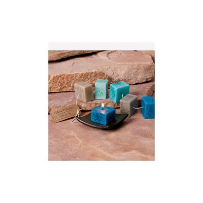 Cc Home Furnishings Pack of 6