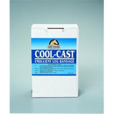 Hawthorne Products Cool Cast Bandage 4 Inch Pack Of 12 - 0004