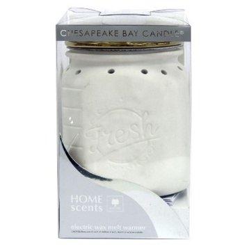 Pacific Trade Electric Warmer - Mason Jar assorted with Artichoke