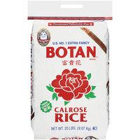 Placeholder Botan U.S. No. 1 Extra Fancy Calrose Rice